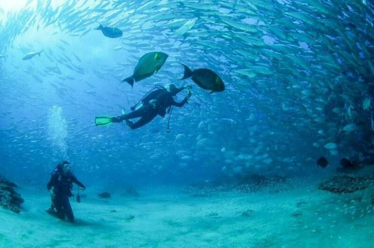 international-english-teacher-snorkelling-in-cabo-pulma-mexico-clear-deep-water-and-big-bright-tropical-fish