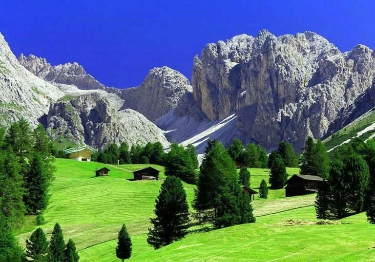 a-lush-green-valley-with-trees-and-the-grey-alps-in-the-backgroud-international-teaching-experience-in-italy